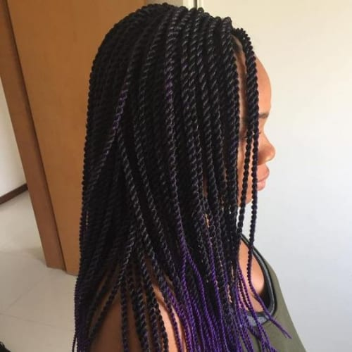 Rope Braids With Purple Ends twist braids