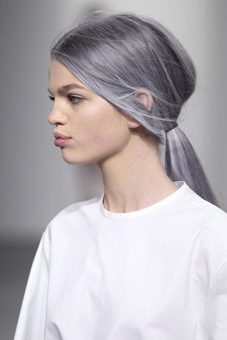 grey hair simple low pony tail
