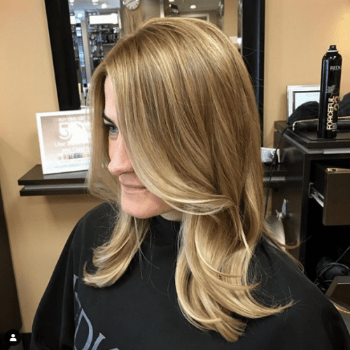 Light Brown Hair with Blonde Shade Highlights