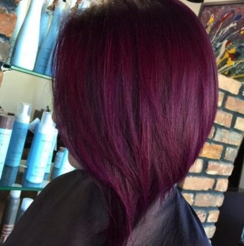Angled Plum hair color Red Lob