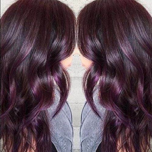 Aubergine plum hair color