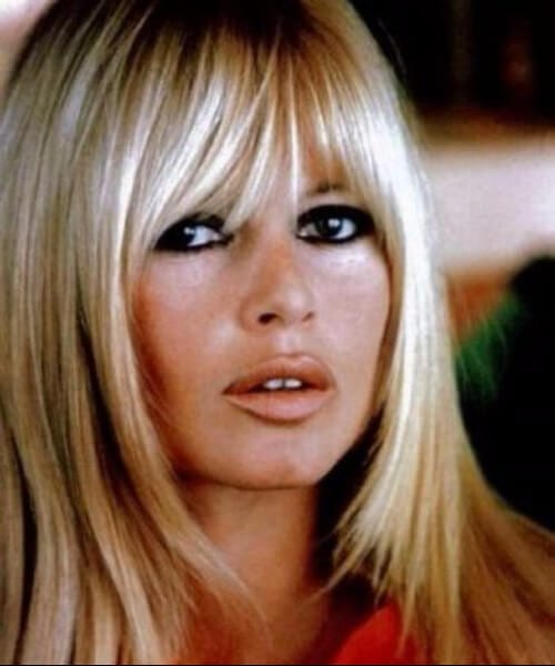 brigitte bardot hairstyles with babgs