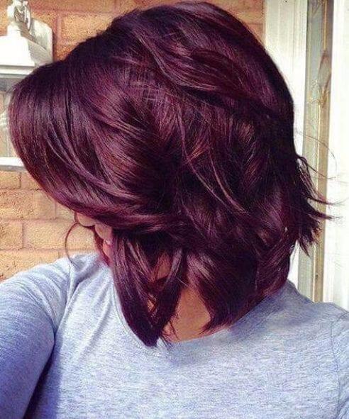 royal purple fall hair color