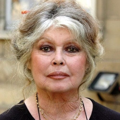 brigitte bardot hairstyles for women over 60