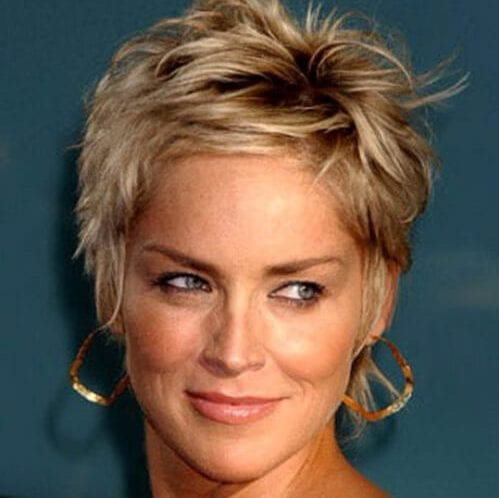 sharon stone short hairstyles for thick hair