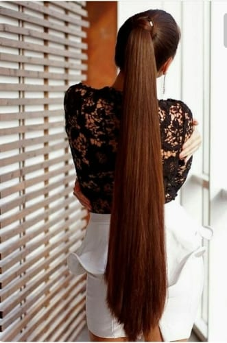 Ponytail Idea for Ultra Long Hair